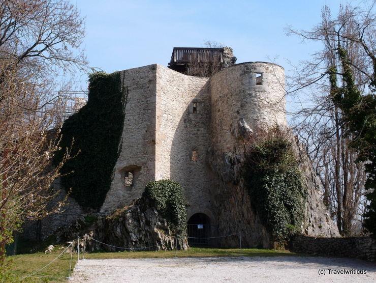 Burgruine von Planina pri Sevnici