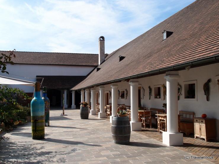Weingut Taubenschuss in Poysdorf